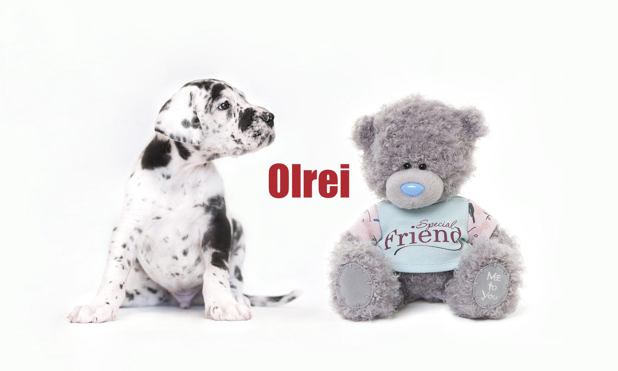 OLREI